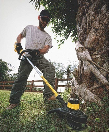 Best 10 Electric Weed Eater/Wacker/String Trimmer Reviews